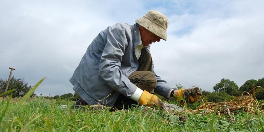 Volunteer Stirley Farm