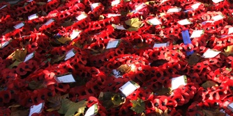 remembrance service - poppy wreaths